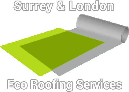 Surrey Eco